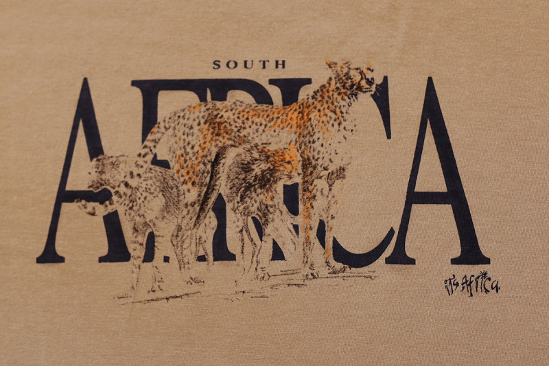 African Cheetah Family